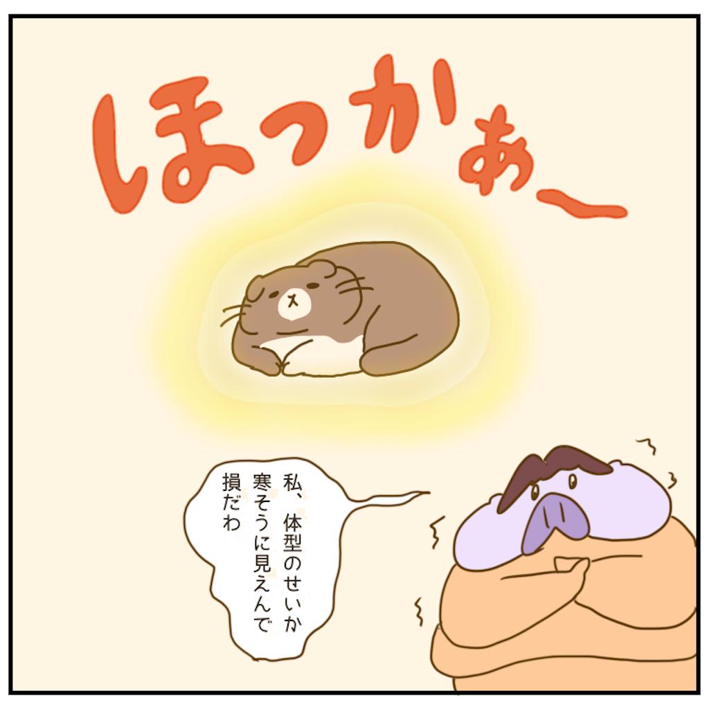 f:id:chiisakiobu:20201217210354p:image