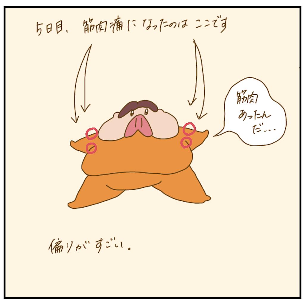 f:id:chiisakiobu:20201220231107p:image