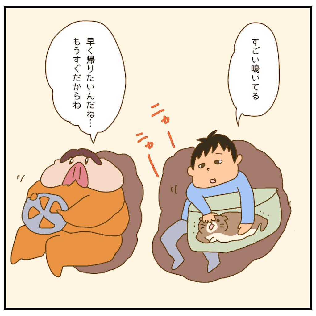 f:id:chiisakiobu:20201223220642p:image