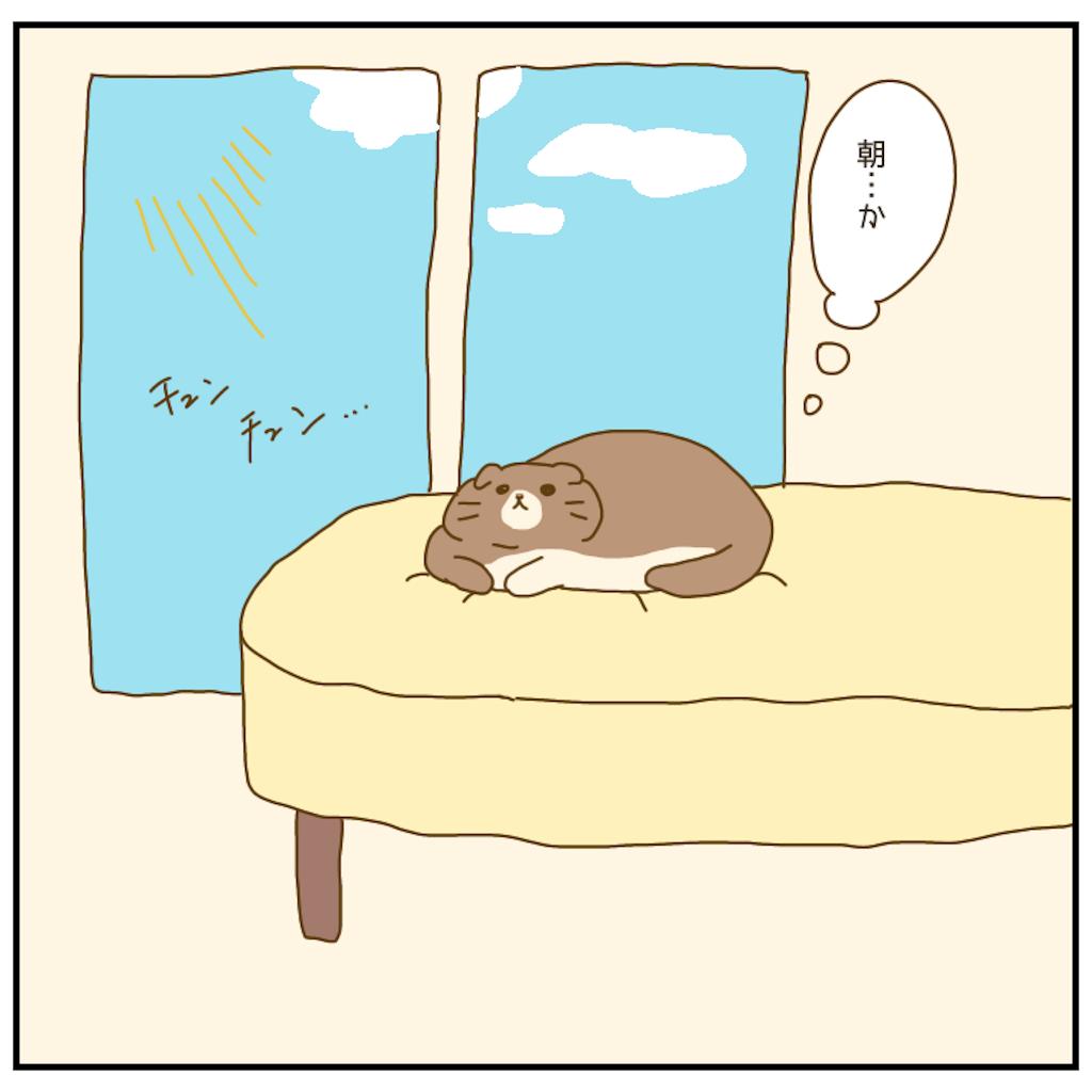 f:id:chiisakiobu:20201224211409p:image