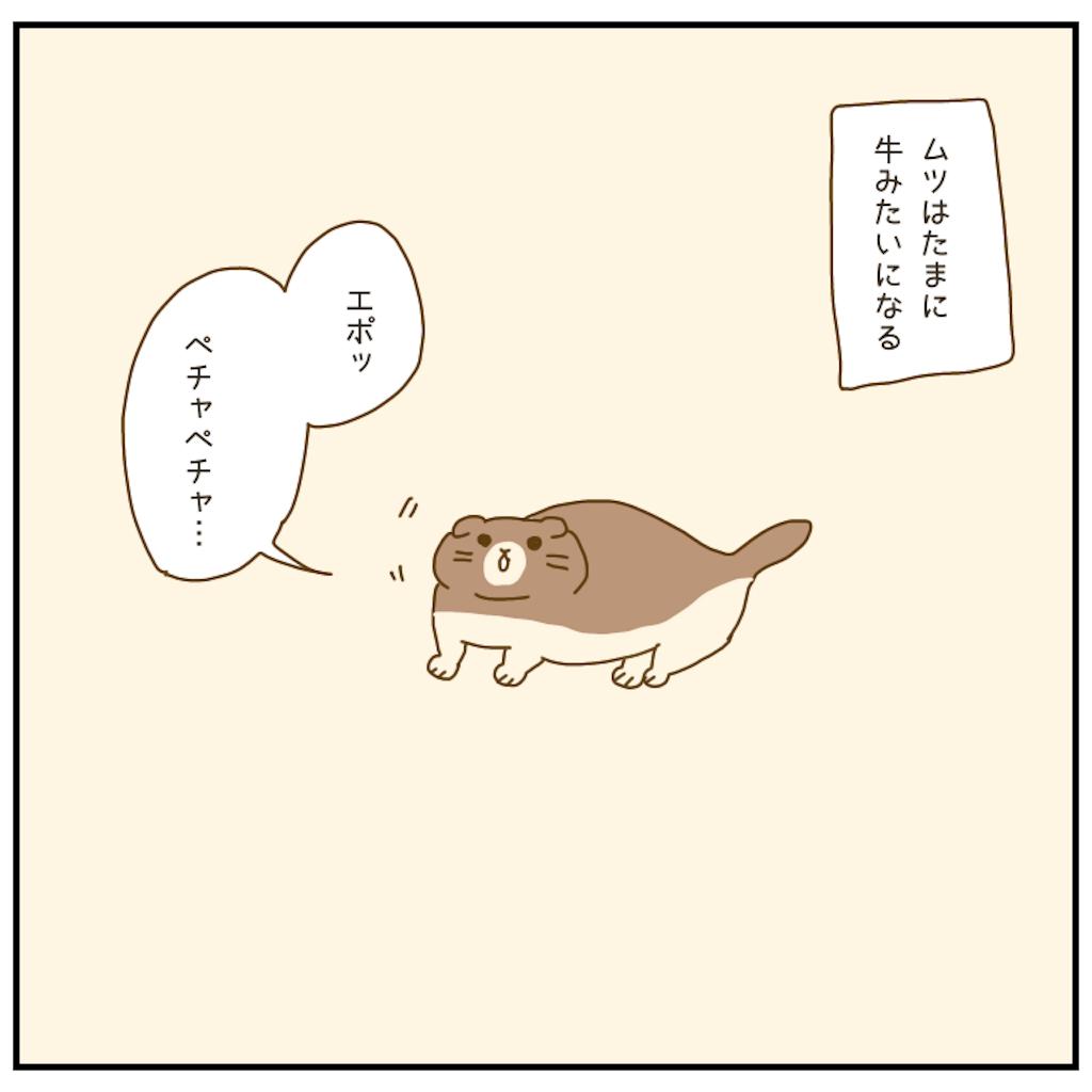 f:id:chiisakiobu:20210102213010p:image