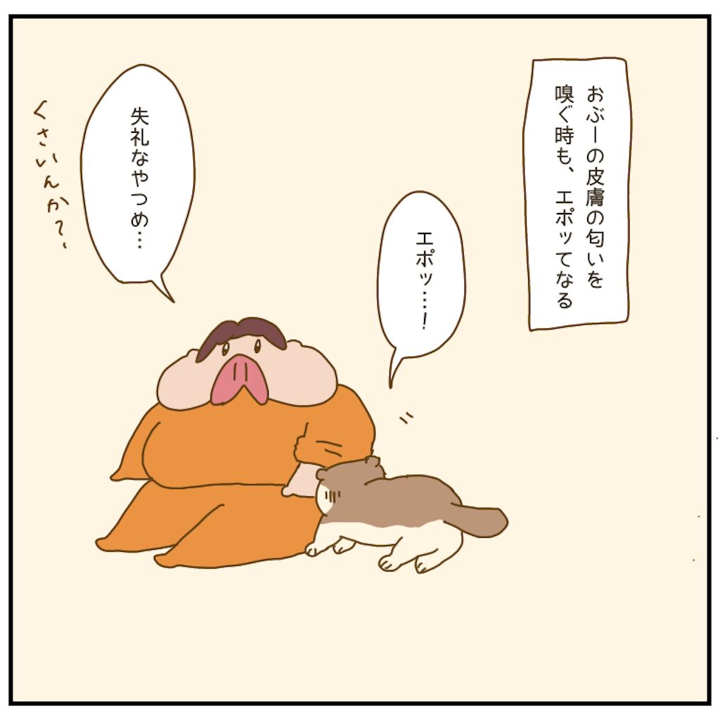 f:id:chiisakiobu:20210102213033p:image