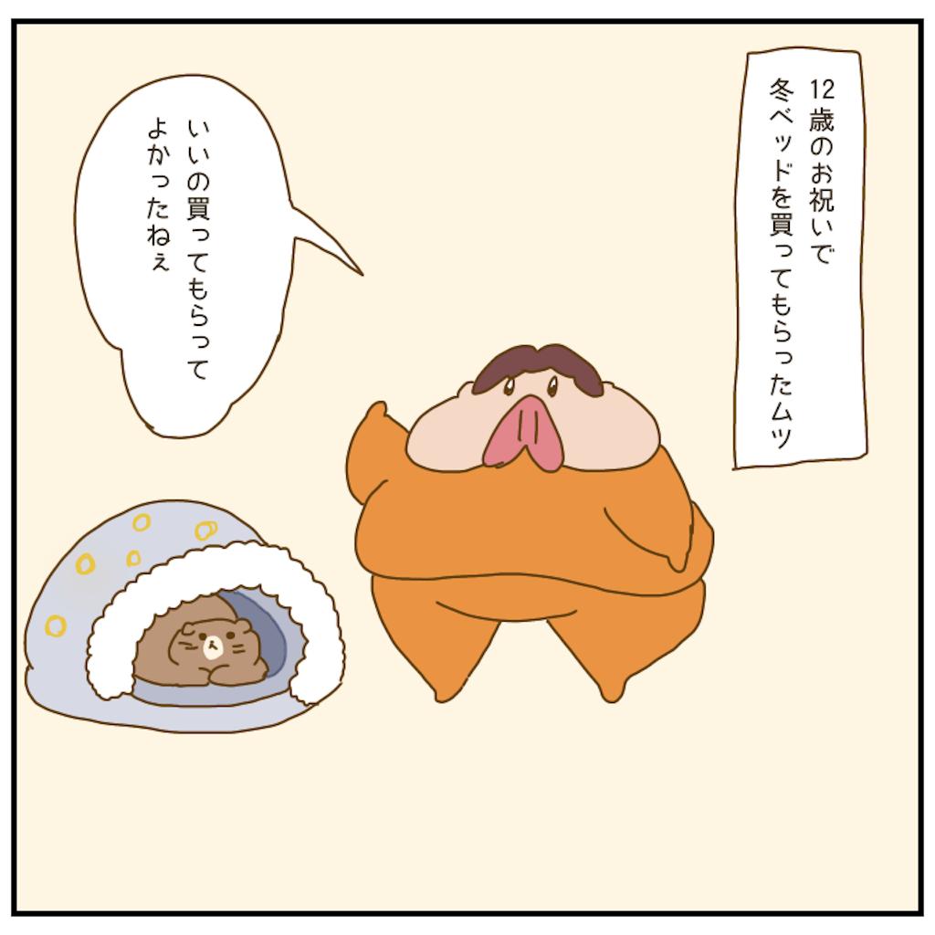 f:id:chiisakiobu:20210107221259p:image