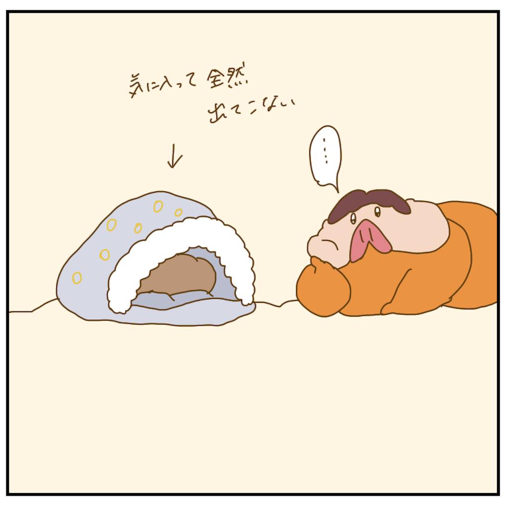 f:id:chiisakiobu:20210107221326p:image