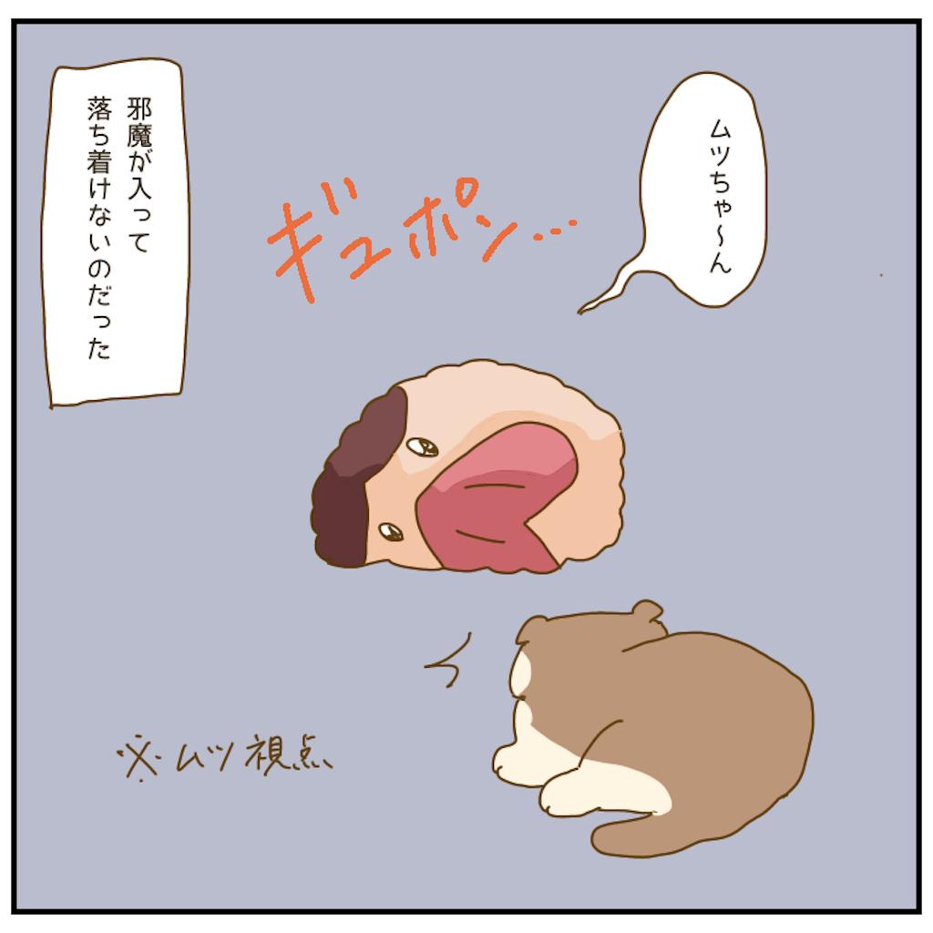 f:id:chiisakiobu:20210107221407p:image