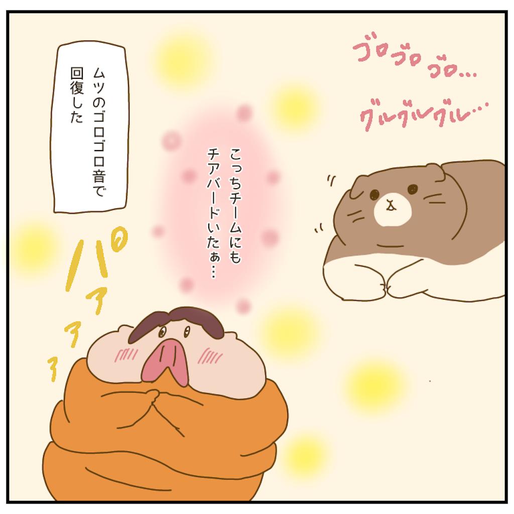 f:id:chiisakiobu:20210115001048p:image