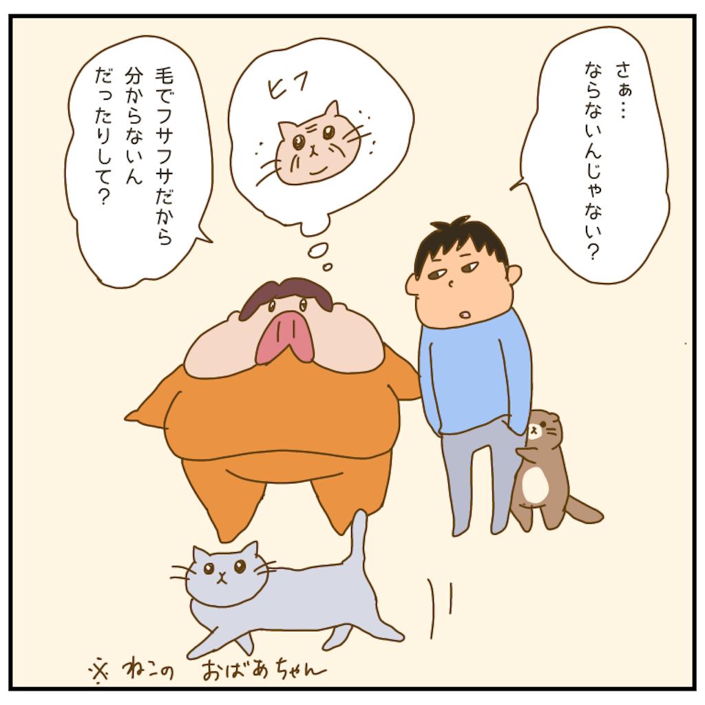 f:id:chiisakiobu:20210120192306p:image