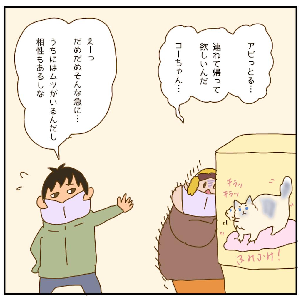 f:id:chiisakiobu:20210130203131p:image