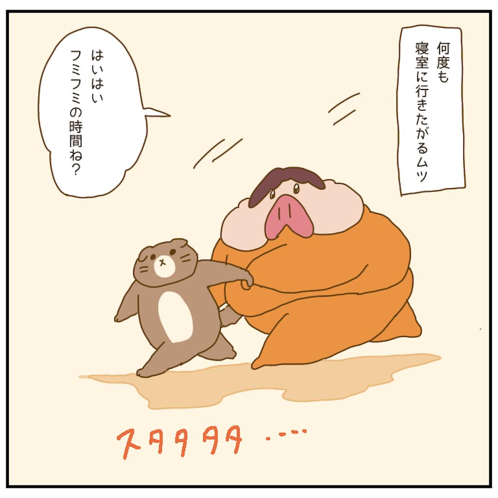 f:id:chiisakiobu:20210202201457p:image