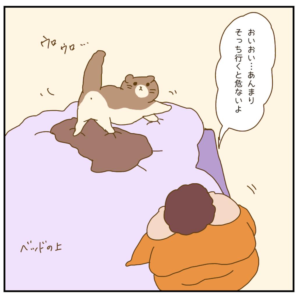 f:id:chiisakiobu:20210202201526p:image