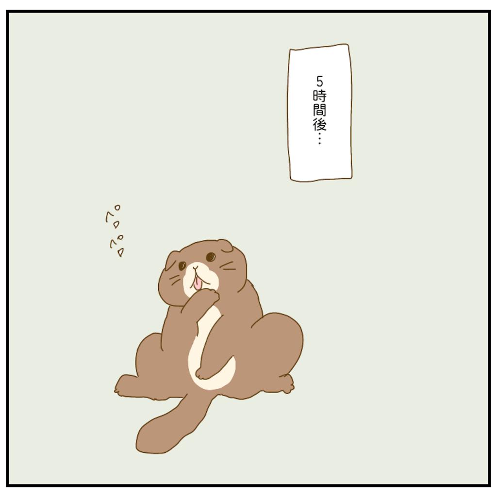f:id:chiisakiobu:20210213213507p:image