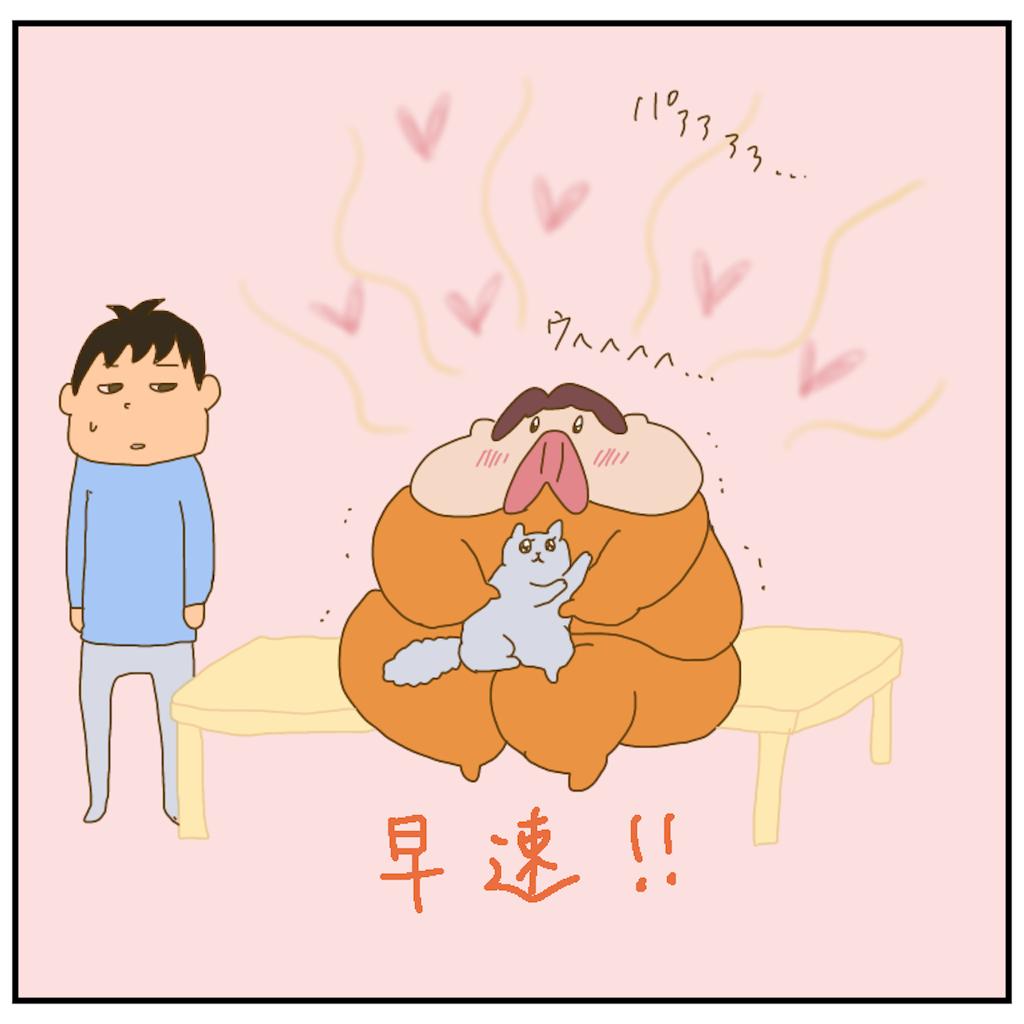 f:id:chiisakiobu:20210219203648p:image