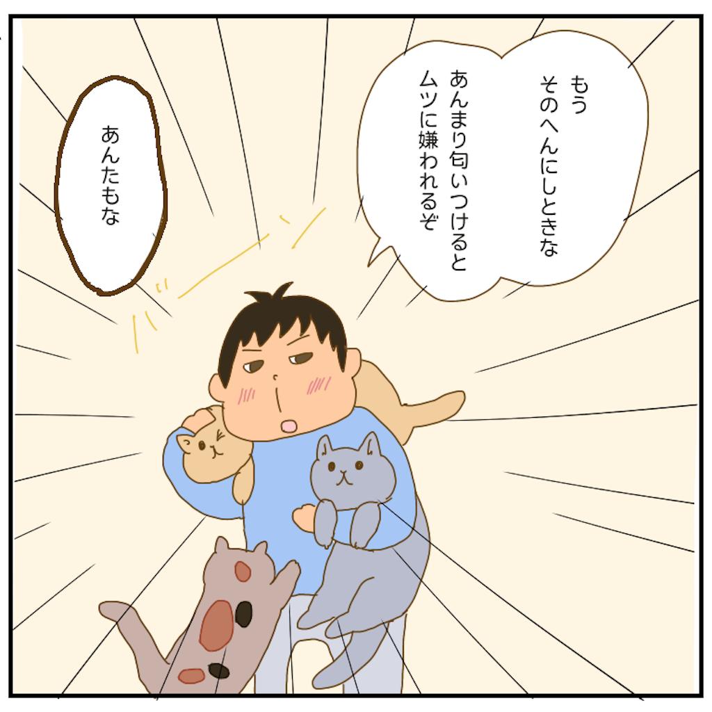 f:id:chiisakiobu:20210219203712p:image