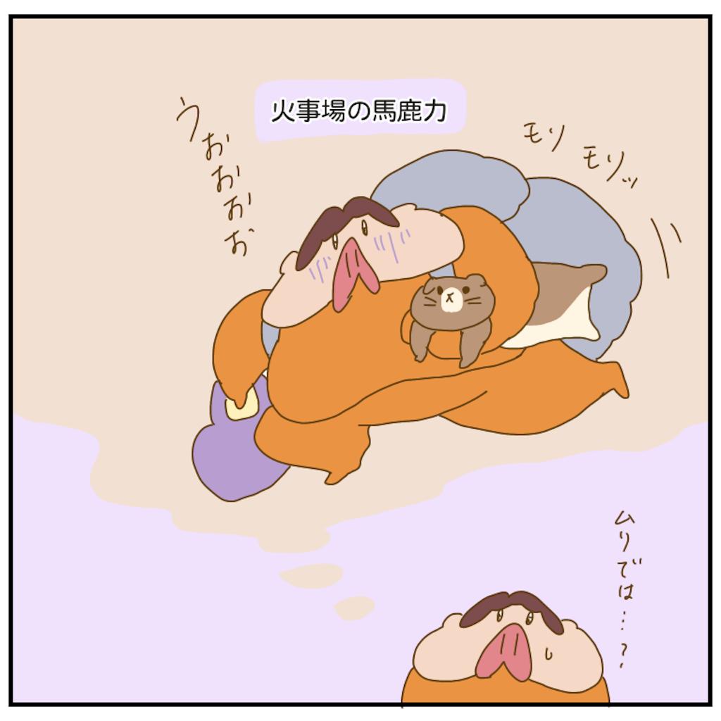 f:id:chiisakiobu:20210307203106p:image