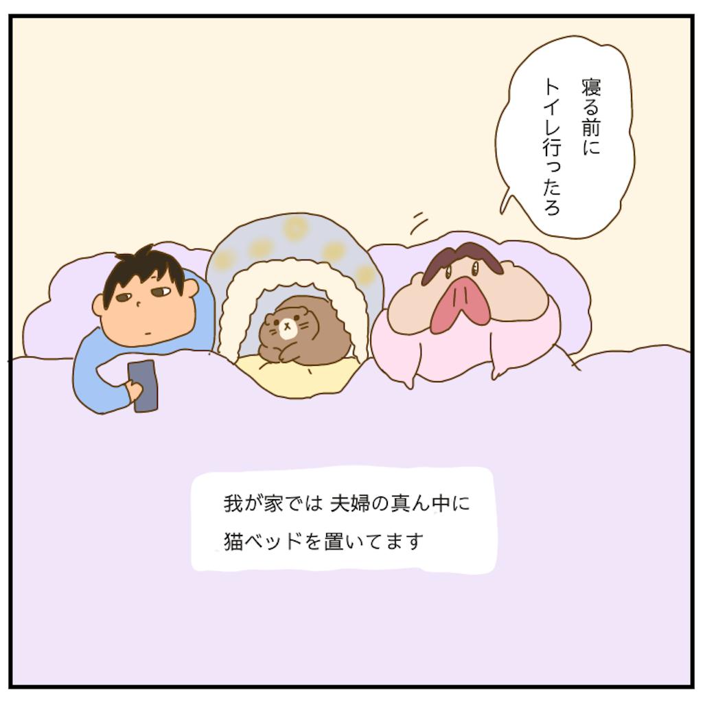 f:id:chiisakiobu:20210310215346p:image