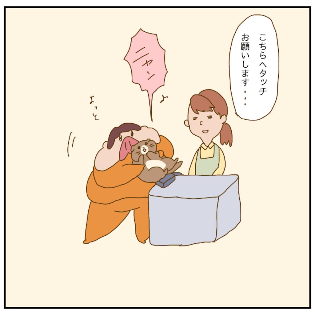 f:id:chiisakiobu:20210319205451p:image