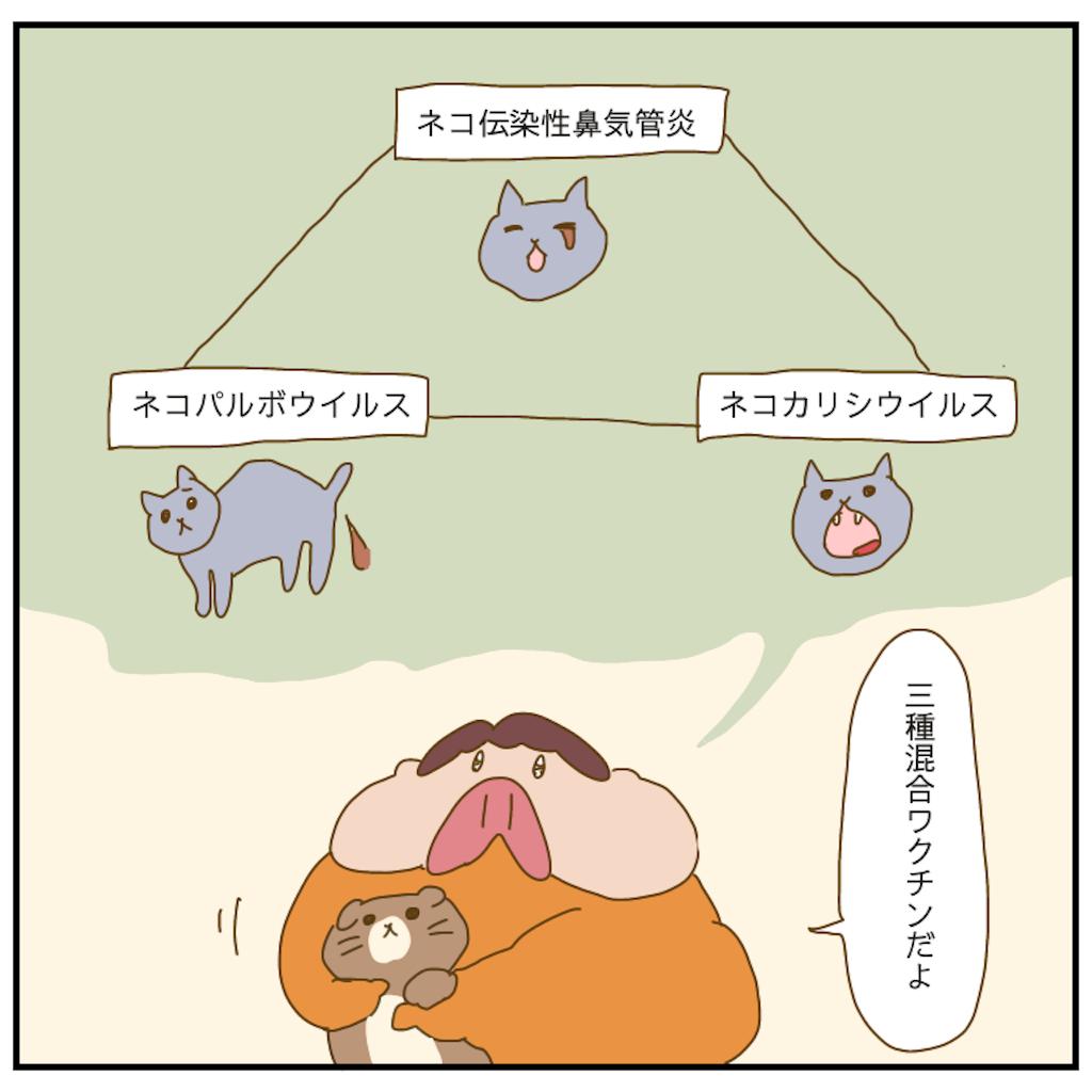 f:id:chiisakiobu:20210509223210p:image