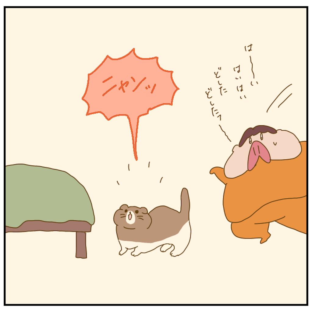 f:id:chiisakiobu:20210514170034p:image