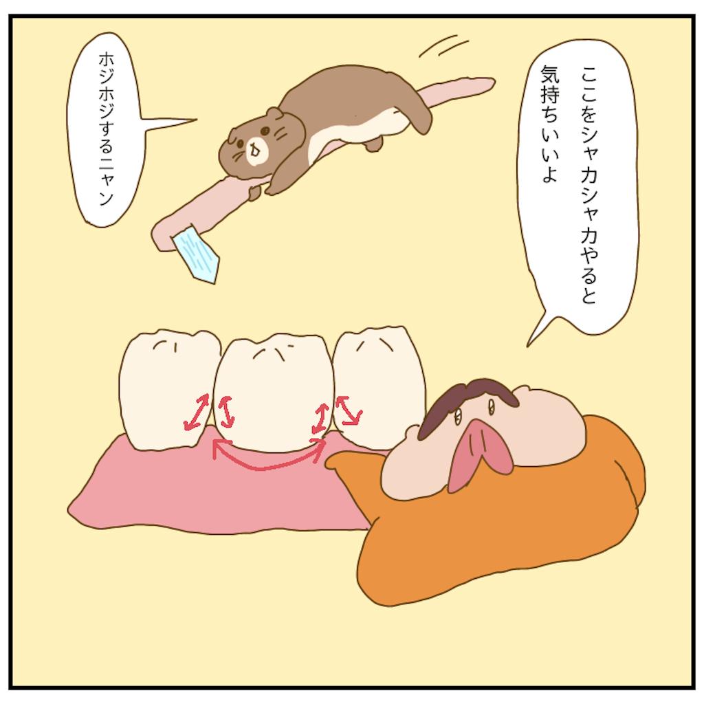 f:id:chiisakiobu:20210521214919p:image