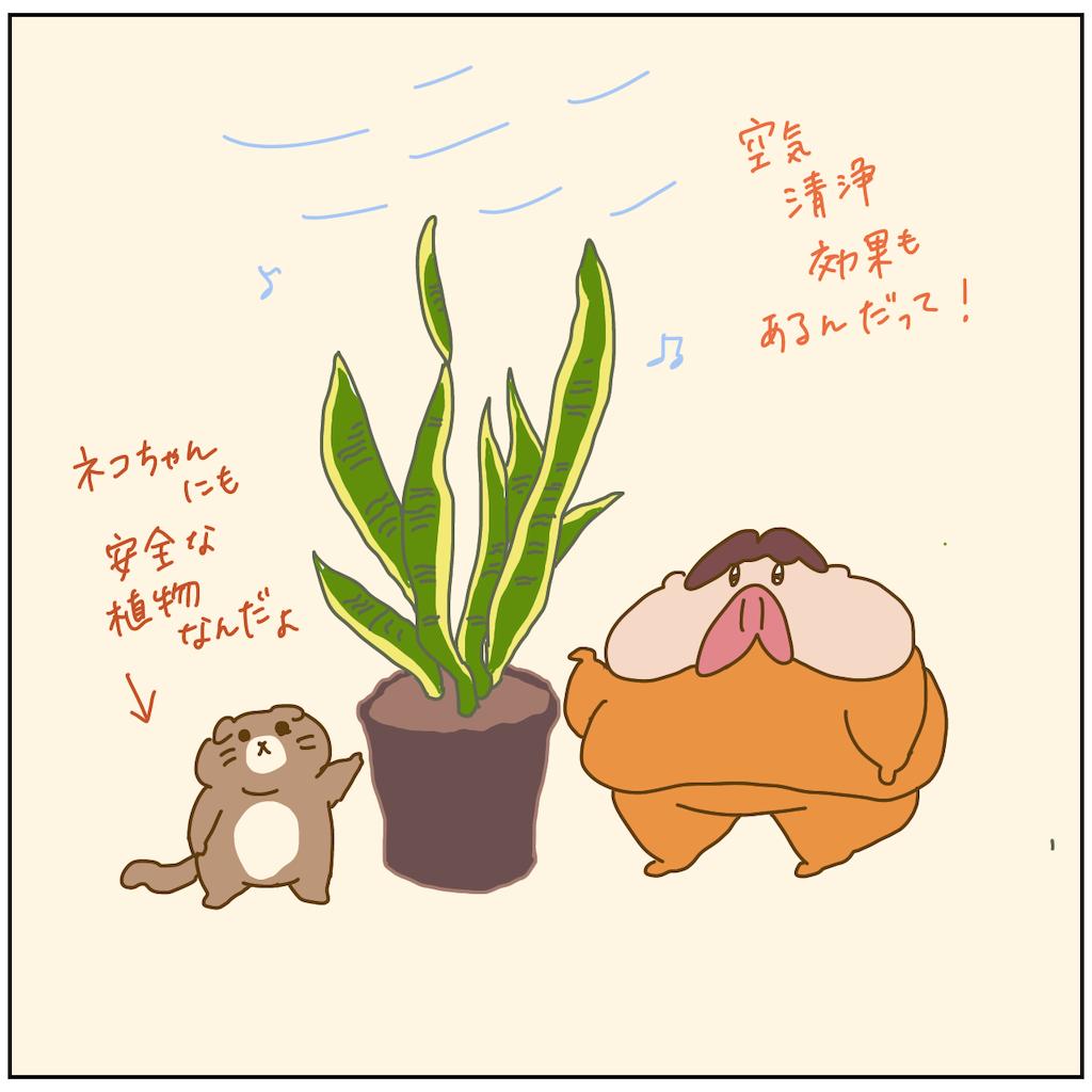 f:id:chiisakiobu:20211011194828p:image