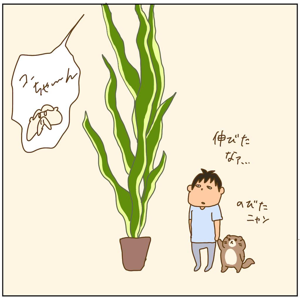 f:id:chiisakiobu:20211011195009p:image