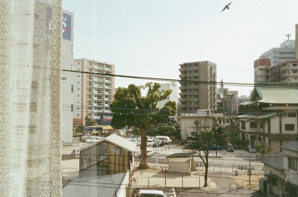 f:id:chikachi_3:20180904204434j:plain