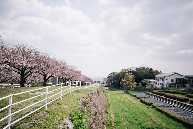 f:id:chikachi_3:20190411130134j:plain