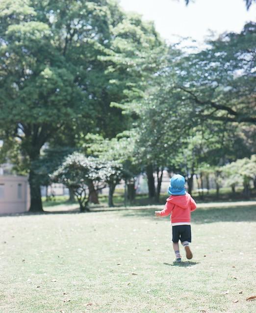 f:id:chikachi_3:20190412111927j:plain