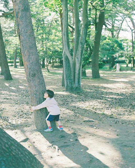 f:id:chikachi_3:20200505164453j:plain