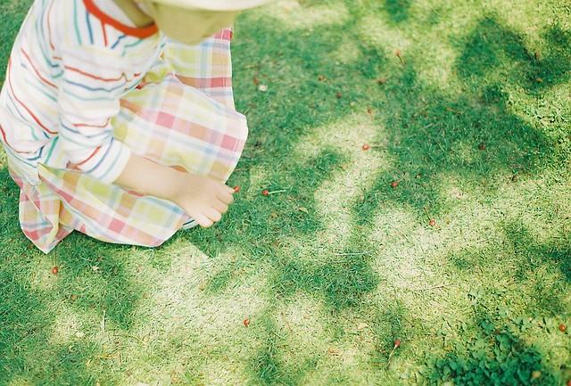 f:id:chikachi_3:20200704094421j:plain