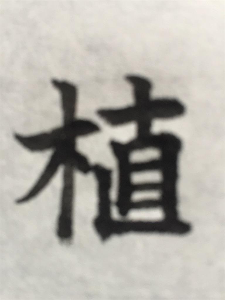 f:id:chikako1115:20170424072436j:image