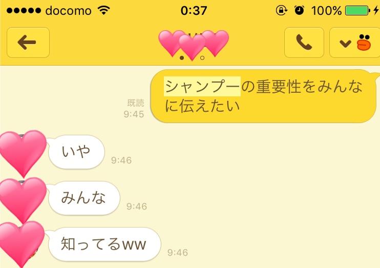 f:id:chikanaakikawa:20170117004005j:plain