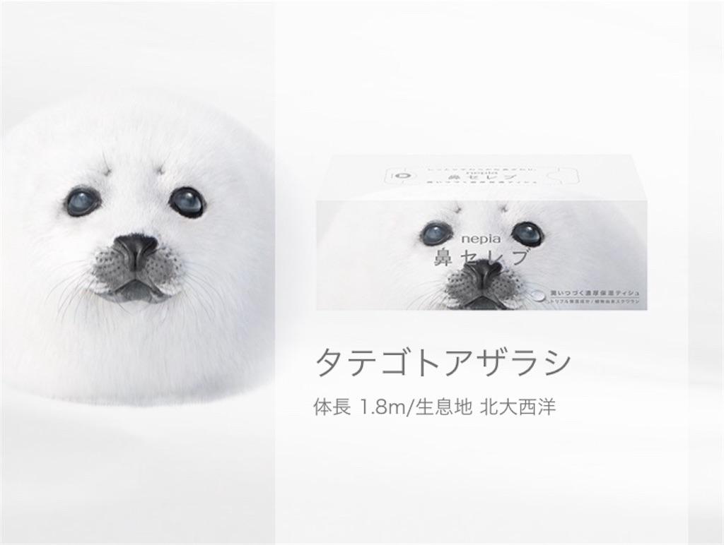 f:id:chikap-oheya-daisuki:20200327221320j:image