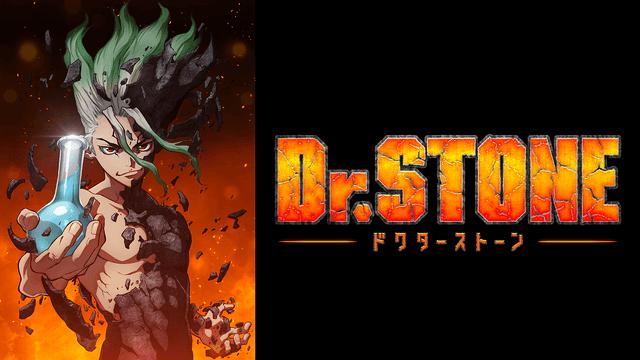 Dr.STONE(ドクターストーン)アニメ