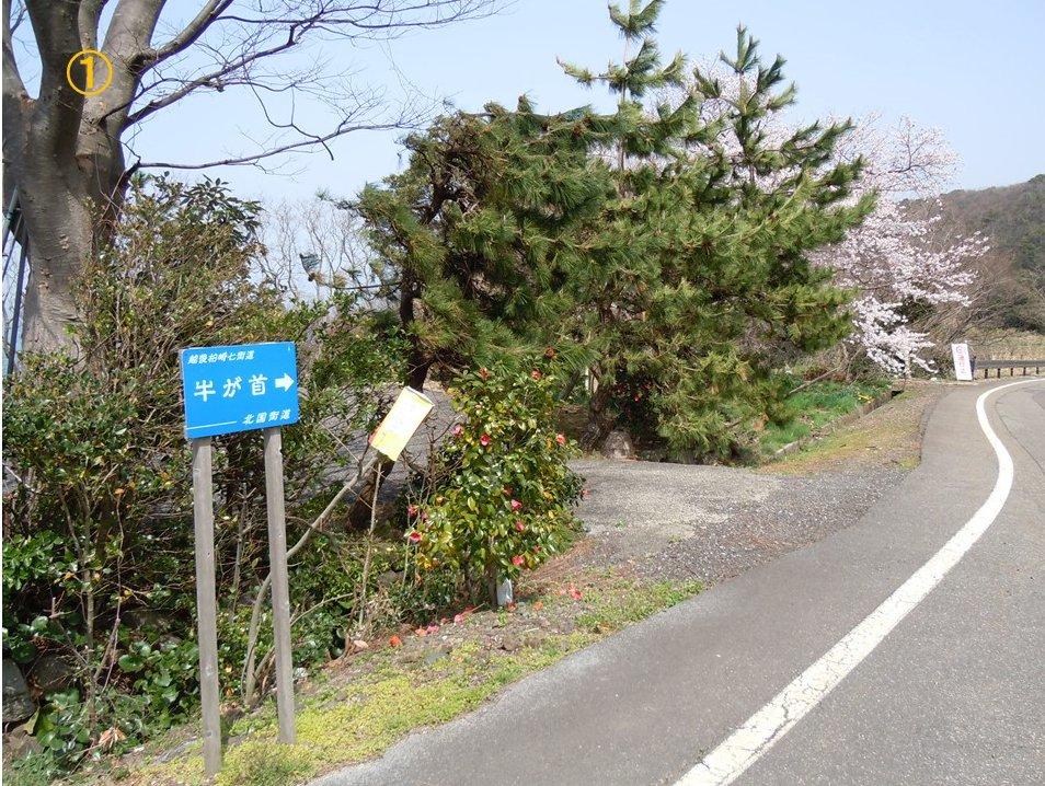 f:id:chikaratookamati:20210403092832j:plain