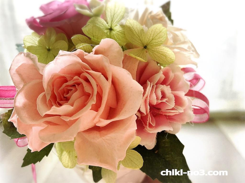f:id:chiki-no3:20190121155039j:image