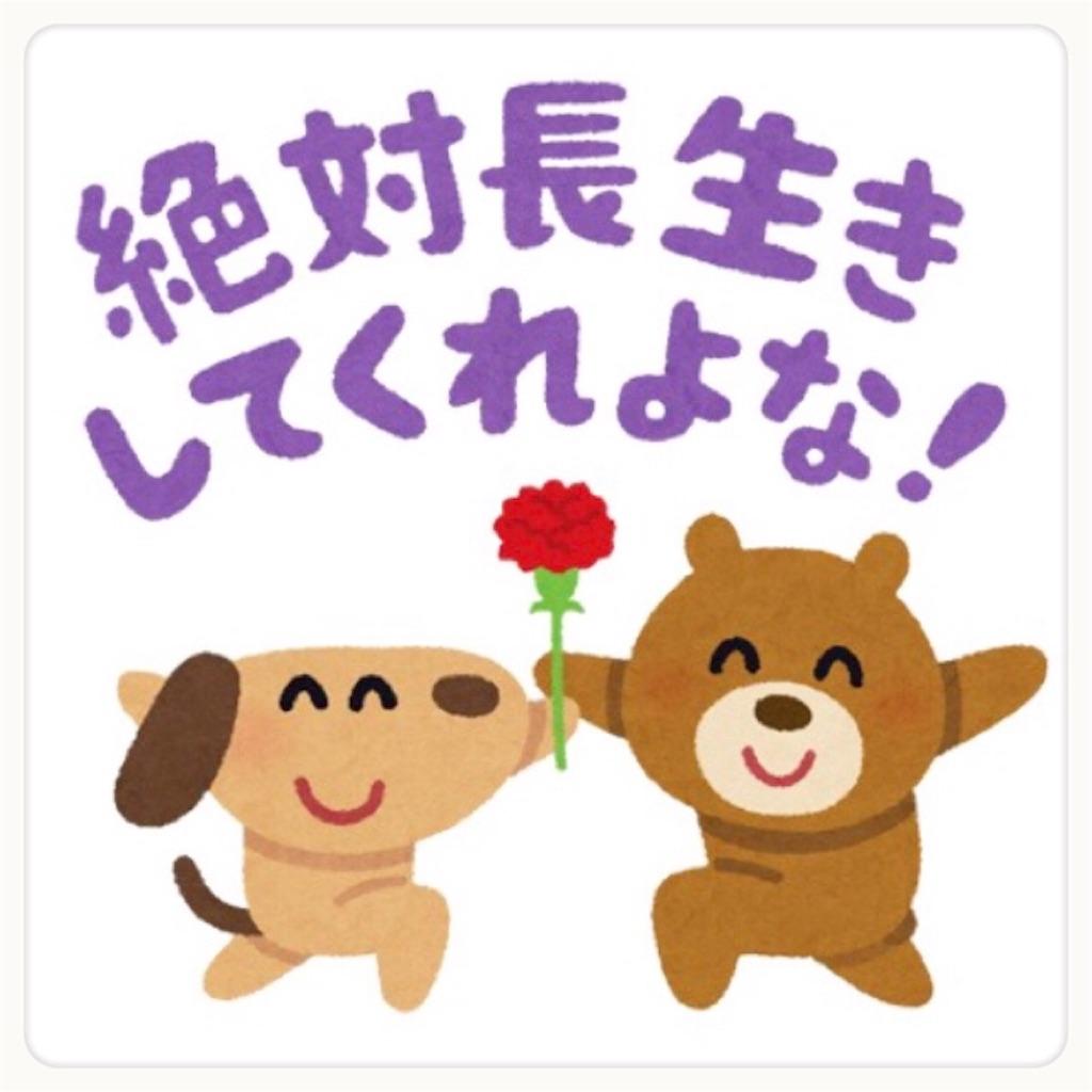 f:id:chiki-no3:20190511185314j:image