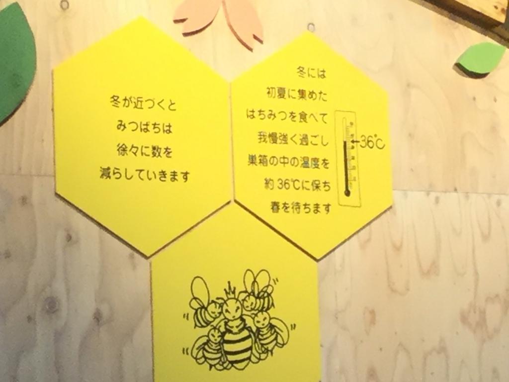 f:id:chikochikorin:20181106082506j:plain