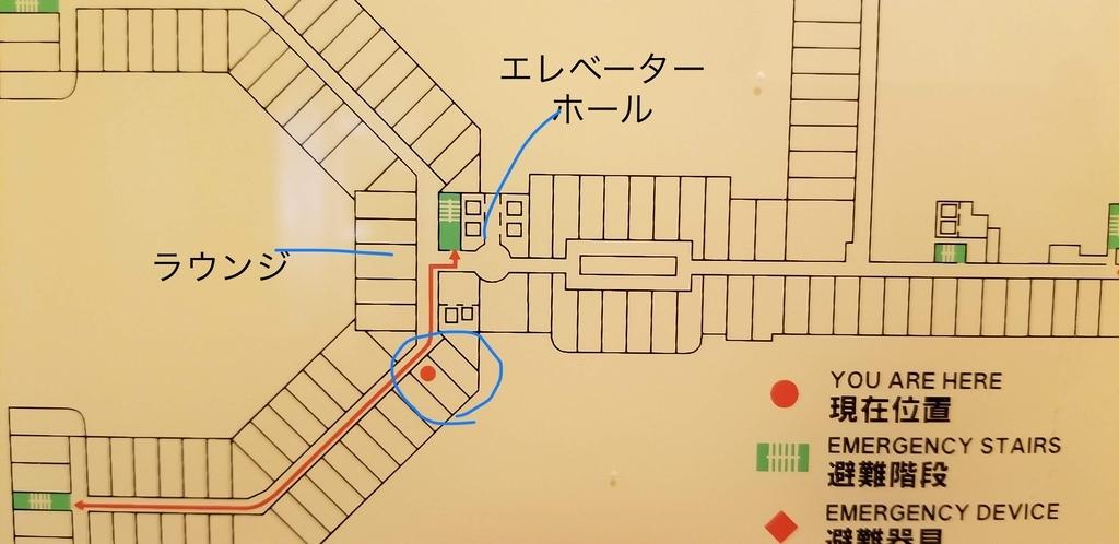 f:id:chikochikorin:20190216095854j:plain