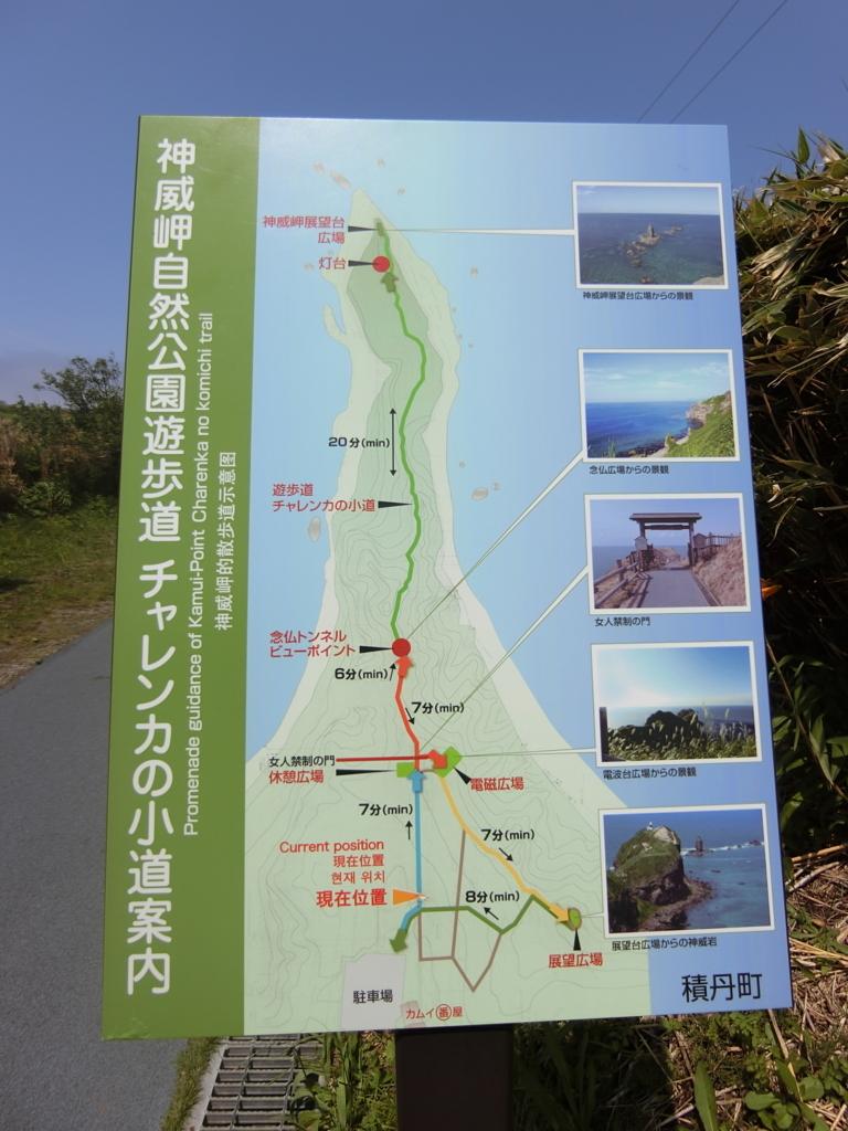 f:id:chikoichi:20170623105342j:plain