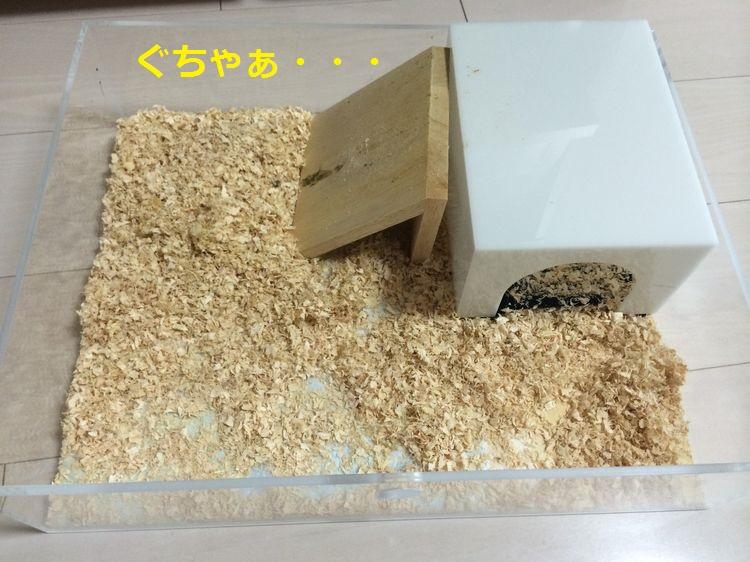 f:id:chikojirou:20150518203618j:plain