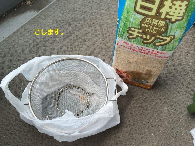 f:id:chikojirou:20150628162038j:plain