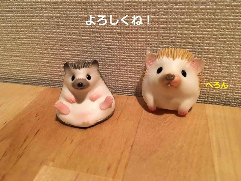 f:id:chikojirou:20160110211108j:plain