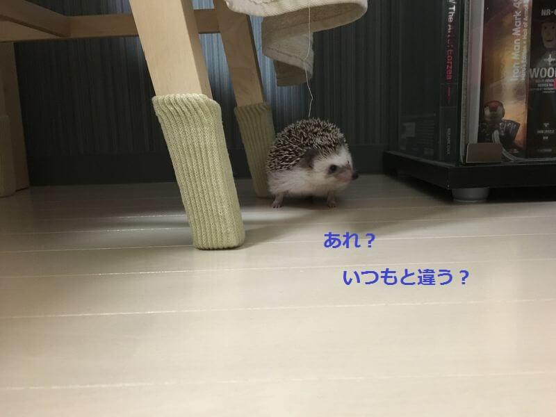 f:id:chikojirou:20160622213245j:plain