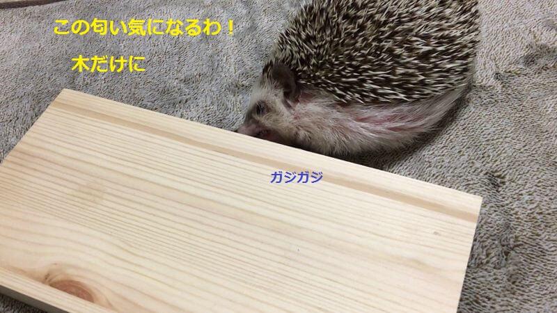 f:id:chikojirou:20160626212514j:plain
