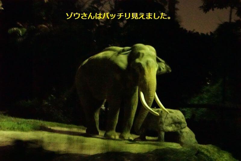 f:id:chikojirou:20160821114253j:plain