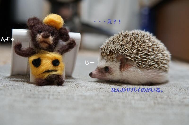 f:id:chikojirou:20160926214428j:plain