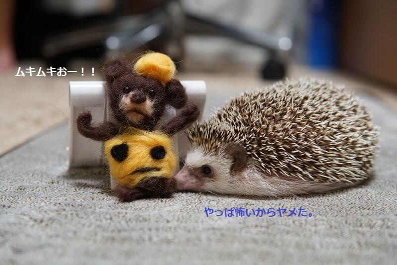 f:id:chikojirou:20160926214454j:plain