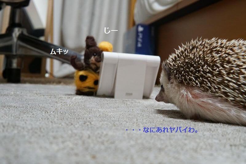 f:id:chikojirou:20160929212736j:plain