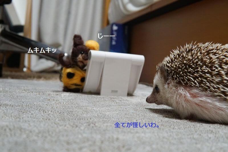 f:id:chikojirou:20160929212743j:plain